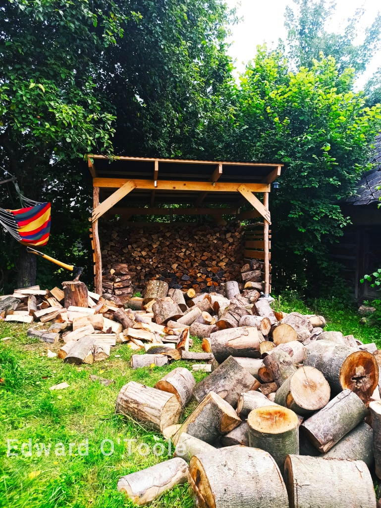 wood pile in the carpathians